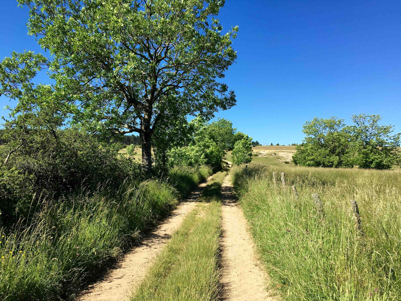 La camp de l'hopitalet découverte chemin