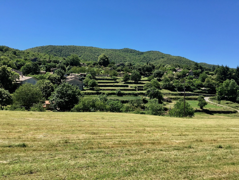 terrasses cultivés en Cévennes