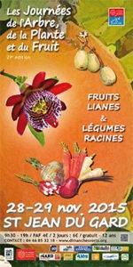 affiche fruits lianes et légumes racines